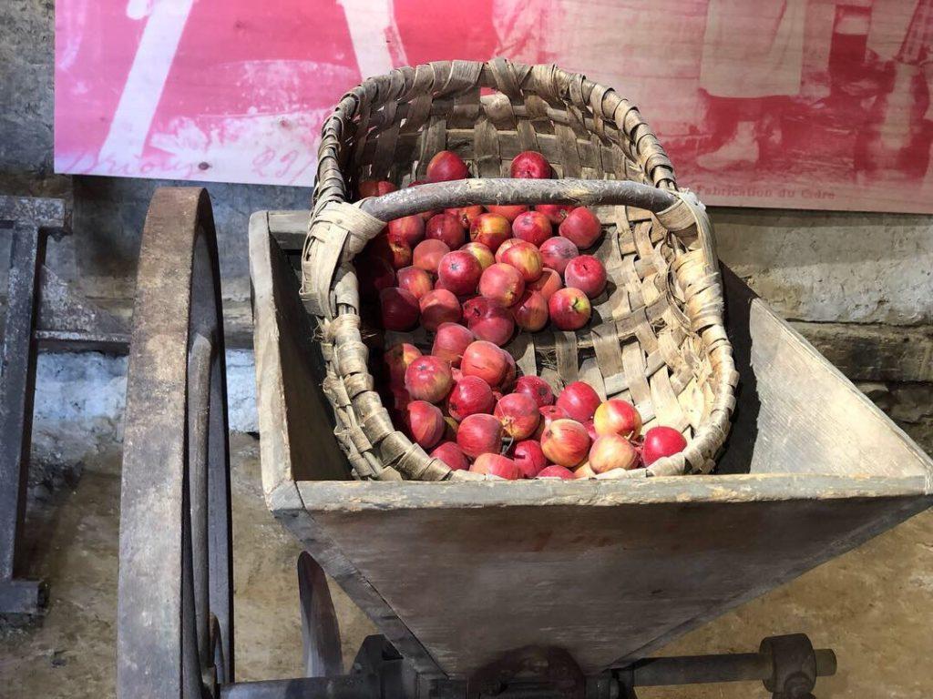musée du cidre barenton